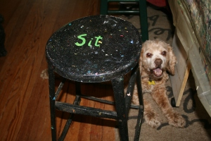 """Come """"Sit"""" a Spell in Kacey Carneal's Studio"""